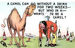 Comics Humor Comic Comique Humour - Camel Without A Drink - 2 Scans - Humour