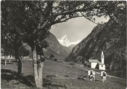 W3412 Antey St. André (Aosta) - Chiesa Di Navillod E Panorama Col Monte Cervino / Viaggiata 1964 - Autres Villes