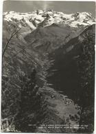 W3423 Gressoney St Jean (Aosta) - Panorama Del Monte Rosa Dal Belvedere / Viaggiata 1954 - Altre Città