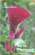 Antigua & Barbuda - ANT-C19a, Flower Celosia, GEM5 (Red), 10 EC$, 2001, Used - Antigua And Barbuda
