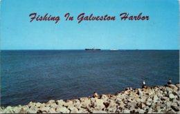 Fishing In Galveston Harbor Texas - Fishing