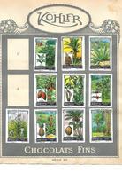 Images Chocolat Kohler. 10 Plantes Tropicales. Collées Sur Feuille Album.  Envoi 1,72 €. - Autres