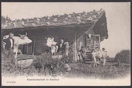 CPA  Suisse, Alpenlandschaft Im KIENTHAL - Svizzera