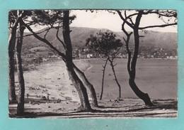 Small Post Card Of Le Lavandou, Provence-Alpes-Cote D'Azur, France.,V102. - Le Lavandou