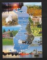 Suomi Finland Finlande Carte Géographique / Rennes Chien / Carte Moderne Couleur - Finlandia