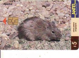 Uruguay, Antel Chip Fauna, Aperea - Uruguay
