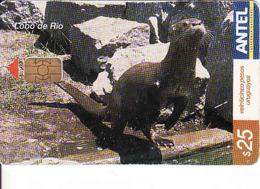 Uruguay, Antel Chip Fauna, Lobo De Rio - Uruguay