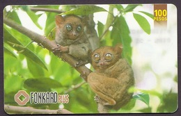Philippines - Tarsier, Wild Animals, Smallest Monkey Of The World, Used Phonecard - Filippijnen