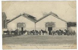 ANGERS - NOUVELLE CASERNE DESJARDIN - Les écuries (chevaux, Cavalerie) - Angers