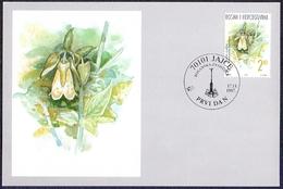 Bosnia And Herzegovina (Croatia) - The Flora Of BiH: Symphyandra Hofmannii, Maximum Card, 1997 - Other