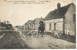 28 - Foret De Sanonches - France