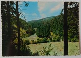 Willingen (Waldeck) - Blick Ins Paradies - Woods - Nv G2 - Waldeck