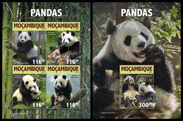 MOZAMBIQUE 2019 - Pandas. M/S + S/S. Official Issue [MOZ190302] - Mozambique
