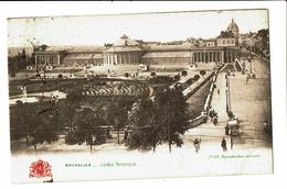 CPA - Carte Postale - Belgique -Bruxelles - Jardin Botanique-1907 VM3523 - Forêts, Parcs, Jardins