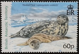 British Antarctic Territory 2005 Seals - Stamps