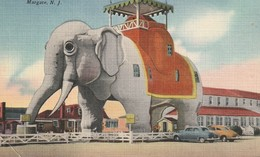 """Elephant Hotel, """"An Old Landmark"""", Margate, New Jersey - Other"""