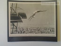 KA404.2 Jeux Olympiques Olympia 1932 Olympic Games Los Angeles - Jeane Fauntz - Plongée Kunstspringen - Olympische Spiele