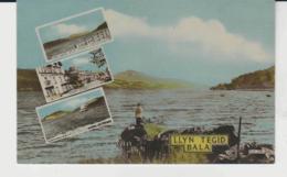 Postcard - Llyn Tegid Bala, Frith Card No.bla208 = 1930's - Unused Very Good - Postcards