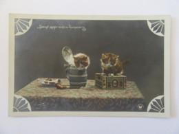"""Carte Postale Fantaisie - """"Deux Apprentis Fumeurs"""" - Chatons - Photo Lohmann - Carte Couleur Circulée - Katzen"""