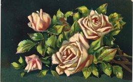 Fiori - Serie Artistica Velluto - Rose - 1123 - Fp Nv - Fiori