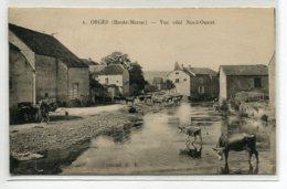 52 ORGES Vaches à La Mare Maisons Rue Coté Nord  Ouest écrite Du Village 1930 Voir Dos   - Cliché R.R No 1  D10 2019 - France