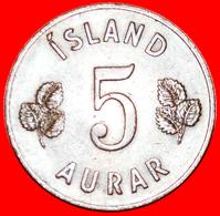 + GREAT BRITAIN BIRCH (1946-1966): ICELAND ★ 5 ORE 1959 UNCOMMON! LOW START ★ NO RESERVE! - Islande