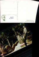 618788,Chieng-mai Thailand Main Stair To Climb On The Phura Thai Doi-Suthep-Mountain - Ansichtskarten