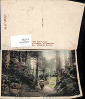 618780,Near Yumoto At Nikko Japan Nikko-Nationalpark - Ansichtskarten