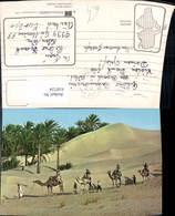 618724,Sahara Caravane Karawane Kamel Tunisie - Tunesien