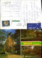 618660,Mehrbild Ak Bright Victoria Park Bäume Brücke Australia - Ohne Zuordnung
