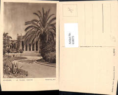 618073,Athenes Athen Le Musee National Palme Greece - Griechenland