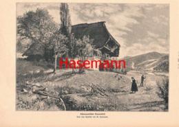 884 W.Hasemann Schwarzwald Bauernhof Druck 1902 !! - Prints