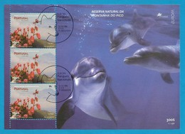 Portugal / Acores 1999 Mi.Nr. 470 (Block 19) - EUROPA CEPT Natur- Und Nationalparks - Gestempelt / Fine Used / (o) - 1999