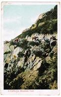A California Mountain Trail (pk59668) - Etats-Unis