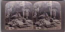 CONSTANTINOPLE Femmes Du Harem Photo Stéréo Underwood Et Underwood - Stereoscopic