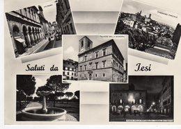 Marche - Ancona - Saluti Da Jesi - Vedutine - - Ancona