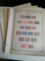 Lot N° 613 SENEGAL Sur Page D'albums Neufs * Des Timbres Collés Au Debut . ,bureaux  Fermé Du 4 Juill Au 19 Aout - Stamps