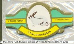 Vitolas Royal Flash. Razas De Conejos. FM Ref. 14-1477 - Vitolas (Anillas De Puros)