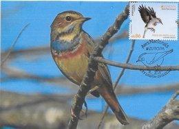 CARTE MAXIMUM - MAXICARD - MAXIMUM CARD - PORTUGAL - EUROPE 2019 - OISEAUX - PISCO-DE-BROWN-BLEU - Luscinia Svecico - Songbirds & Tree Dwellers