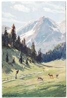 AK Gebirge Und Rehe, Künstler AK, Splitgerber.jr., Ungel. - Künstlerkarten