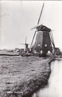 261059Maasland, Molen (vouwen Linkerkant)(FOTO KAART) - Pays-Bas
