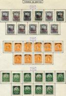 13276 NICARAGUA Collection Vendue Par Page Service  N°31/41, 42/51, 52/61 */ °   1893-95    B/TB - Nicaragua