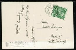 Ref 1303 - Postcard - Nechanice Nechanitz Bohemia - Now Czech Republic - Painting - Austria Stamp - Czech Republic