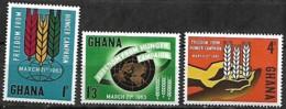 GHANA 1963 Campagne Mondiale Contre La Faim Emblème F.A.O. Épis, 3 Val Mnh - Tegen De Honger