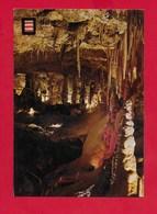 CARTOLINA NV MONACO - MONTE CARLO - Le Grotte Du Jardin Exotique - 10 X 15 - Monte-Carlo