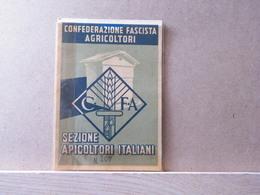 MONDOSORPRESA, 1941/1946 TESSERA CONFEDERAZIONE FASCISTA AGRICOLTORI - SEZIONE APICOLTORI ITALIANI - Documenti Storici