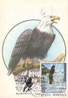 BIRDS, BALD EAGLE, CM, MAXICARD, CARTES MAXIMUM, 1993, ROMANIA - Arends & Roofvogels