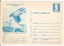 BIRDS, OSPREY, KESTREL, PC STATIONERY, ENTIER POSTAL, 1977, ROMANIA - Arends & Roofvogels