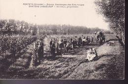 GIRONDE –  PORTETS – Château Lagueloup  (Vendangeurs) - Francia