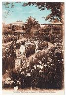 CPA Exposition De Fleurs Au Japon, Ungel. - Ausstellungen